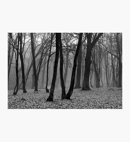 FOUR Photographic Print