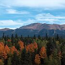 Pikes Peak from Divide, Colorado in the fall by Christine Ford