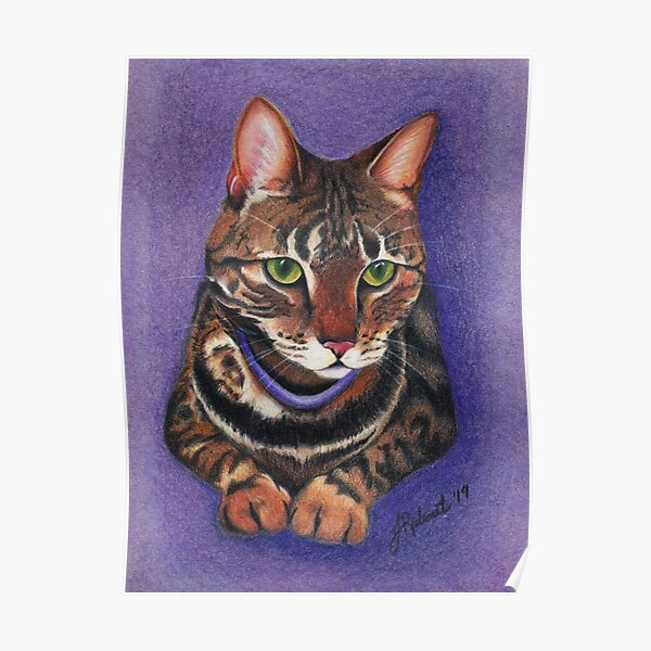 Tabby Cat Portrait (2019) Poster