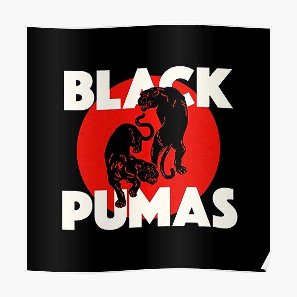 duo black pumas with genre;  Funk, R&B, Musik soul Poster