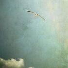 Take flight by Nikki Smith (Brown)