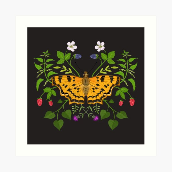 Butterfly with berries Art Print
