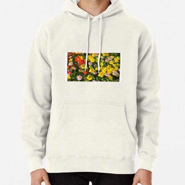 moss rose,how to grow Pullover Hoodie