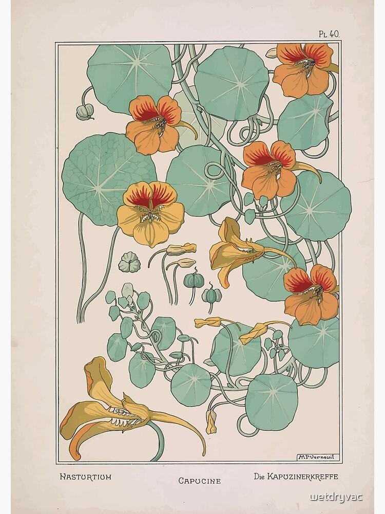 Plante et Ses Applications Ornementales Ornamental Plants Grasset Eugene Maurice Pillard Verneuil 1896 Art Nouveau 0079 Nasturtium by wetdryvac