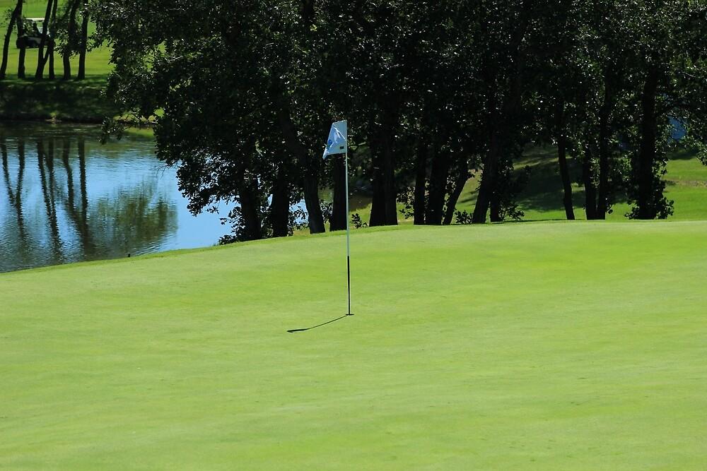 Hole on a Golf Course by rhamm
