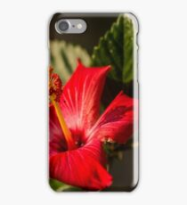 Playing With Depth of Field iPhone Case/Skin