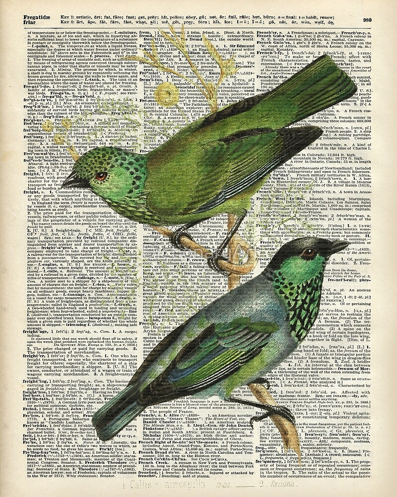Green Canary Brds Over Vintage Book Page by DictionaryArt