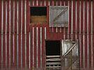 Barn Doors by Sheryl Gerhard