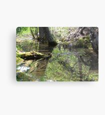 Reflections In A Forest Pond Metal Print