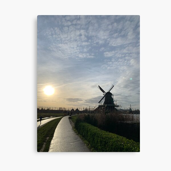 sunshine in windmill country Canvas Print
