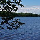 Island Lake #2 by AuntieJ