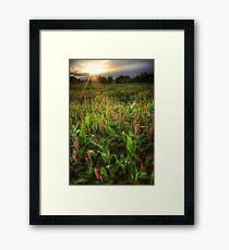 Lush Framed Print
