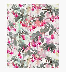 Rainbow Fuchsia Floral Pattern - with grey Photographic Print