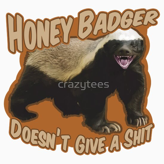 TShirtGifter presents: Honey Badger Doesn't Give A Shit