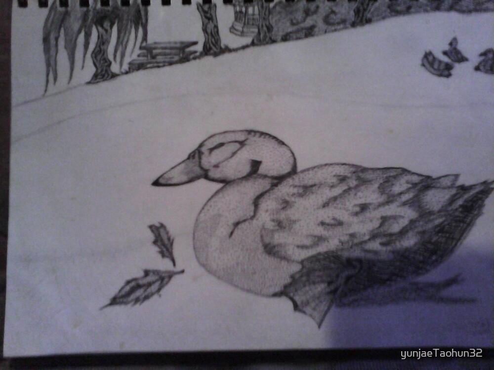 Ducks at rest by yunjaeTaohun32