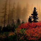 Bohema Saddle Fall Colors by Charles & Patricia   Harkins ~ Picture Oregon