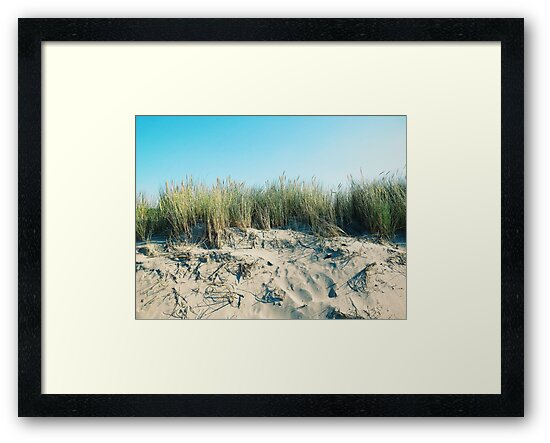 dunes by Jan Smith