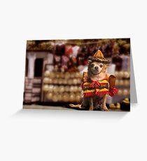 Chihuahua Bandito Greeting Card