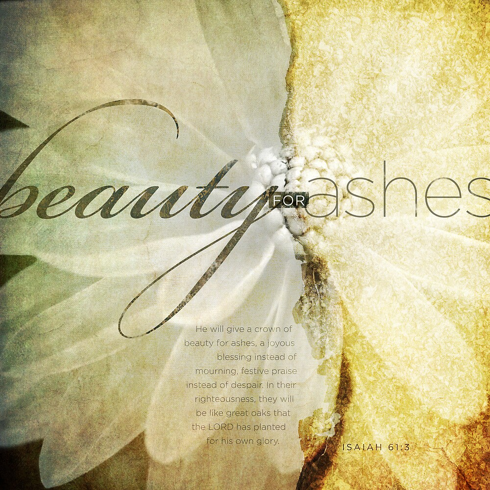 Beauty For Ashes by Dallas Drotz