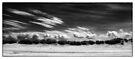 Cloud Race by Andy Freer