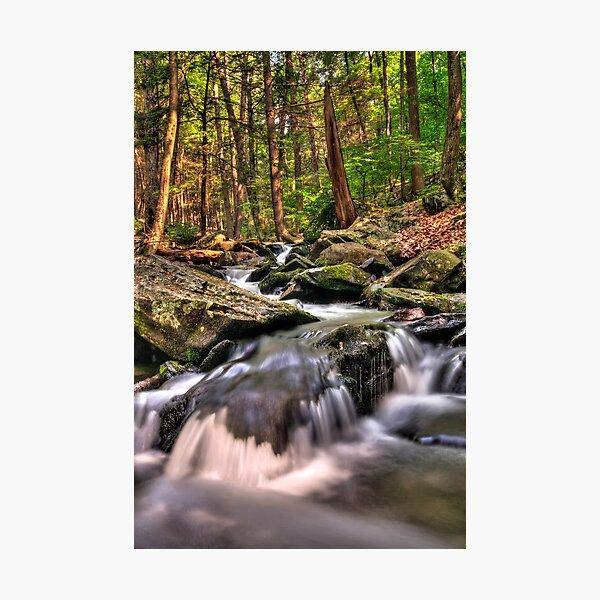 Bushkill Creek Photographic Print
