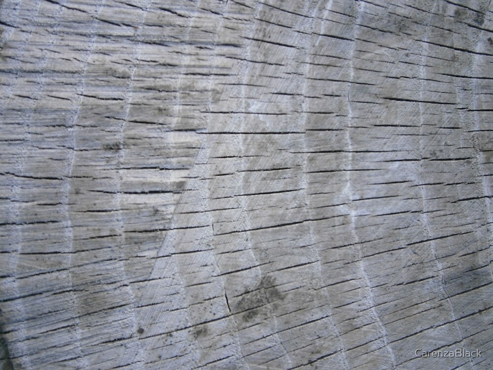Wood Grain by CarenzaBlack