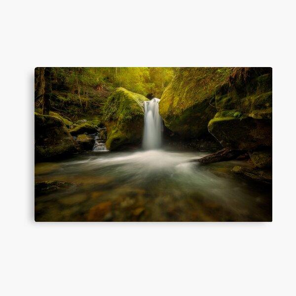 Lower Chasm Falls Canvas Print