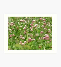 Sea of Clover Art Print