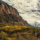 Rocky Mountain Autumn Glory by Bo Insogna