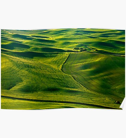 Palouse Patterns Poster
