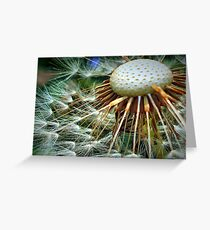 Puffed Out Greeting Card