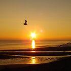 Llandudno Sunset by Johindes