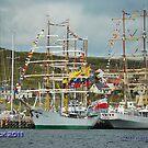 maritime celebration  by NordicBlackbird