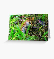 Philippine Leopard Greeting Card
