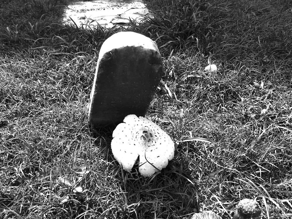 Mushroom Gravestone by ashesofheroes