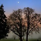 Early Dreams From The Heart by Charles & Patricia   Harkins ~ Picture Oregon