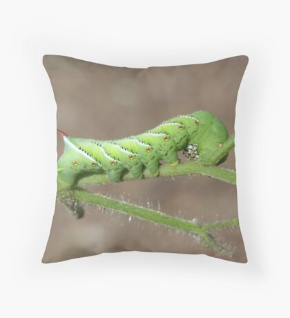 Watch Out for the...... Throw Pillow