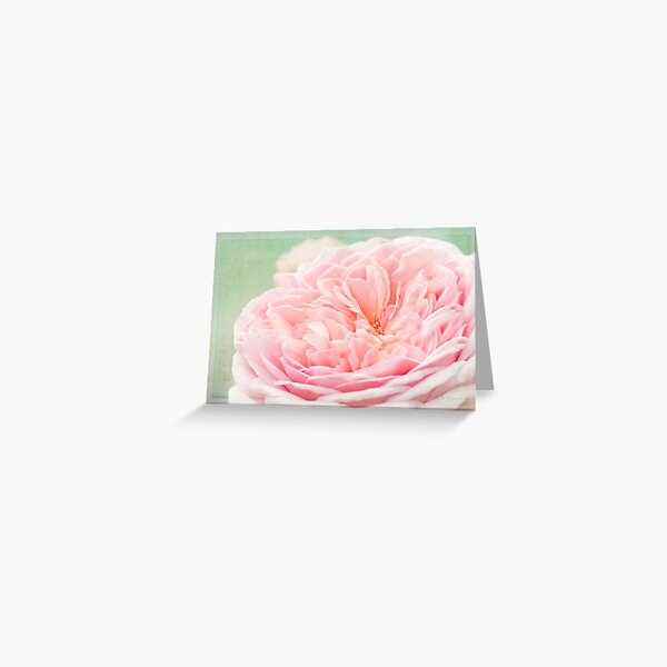 French Kiss Rose Greeting Card