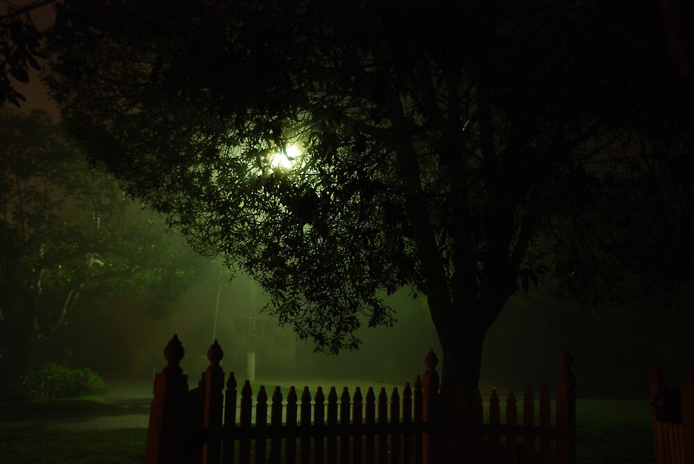 Midnight streetscape by Sandra Albin