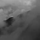 Pyrenees by Dean Bailey