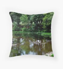 Cool Green On A Hot Summers Day Throw Pillow