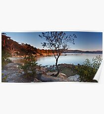 Coningham Rocks Early Morning Poster