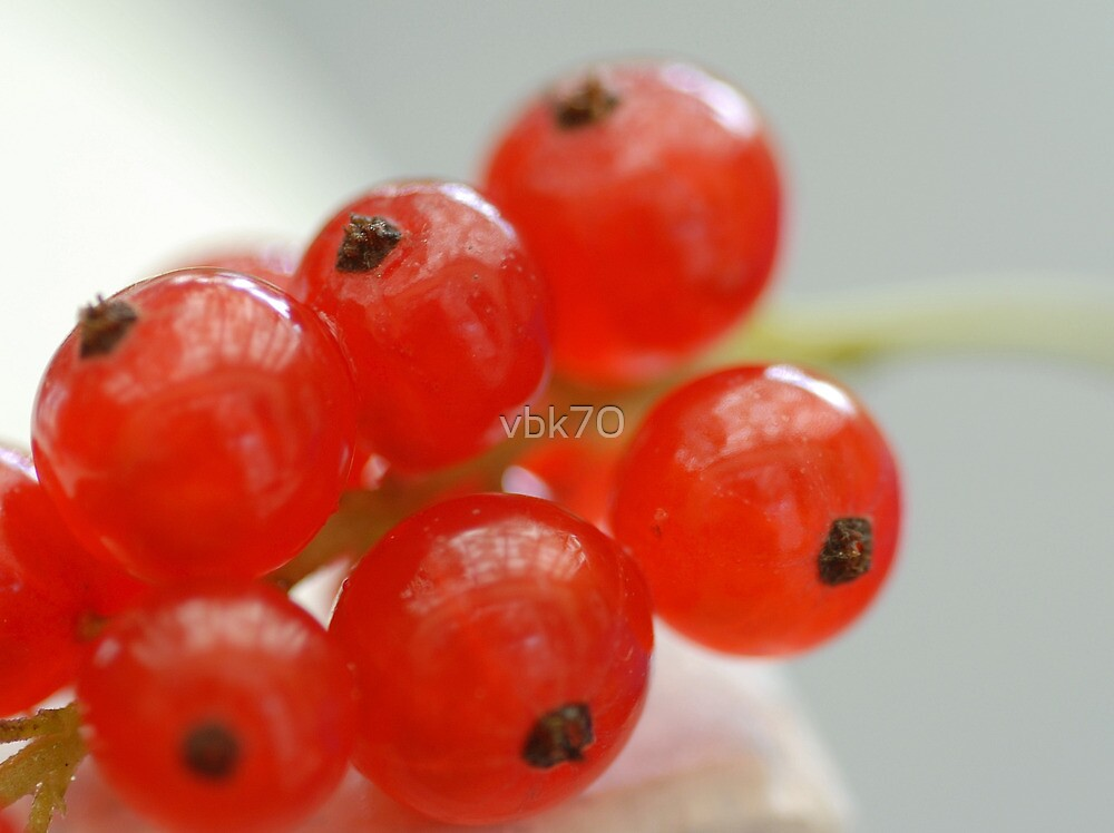 Red Currant I by vbk70