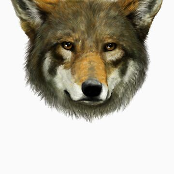 Wolf face by LauraMSS