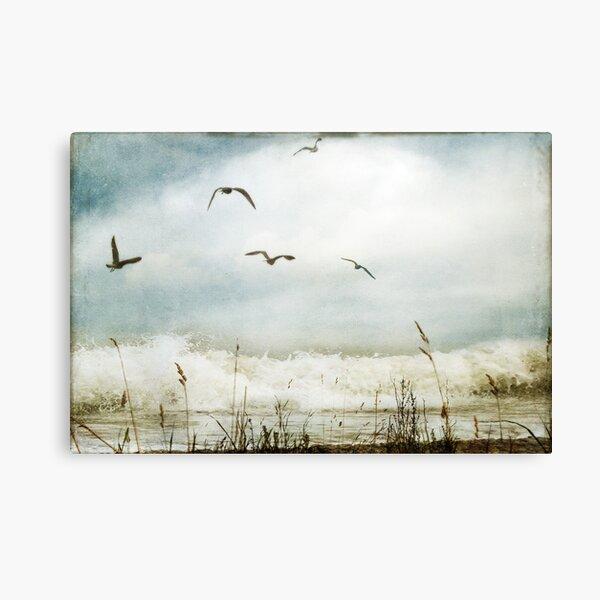 Love of the Sea I Canvas Print
