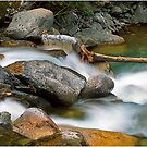 The River by dfm63