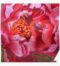 Blooming Peony, mixed media on canvas Poster