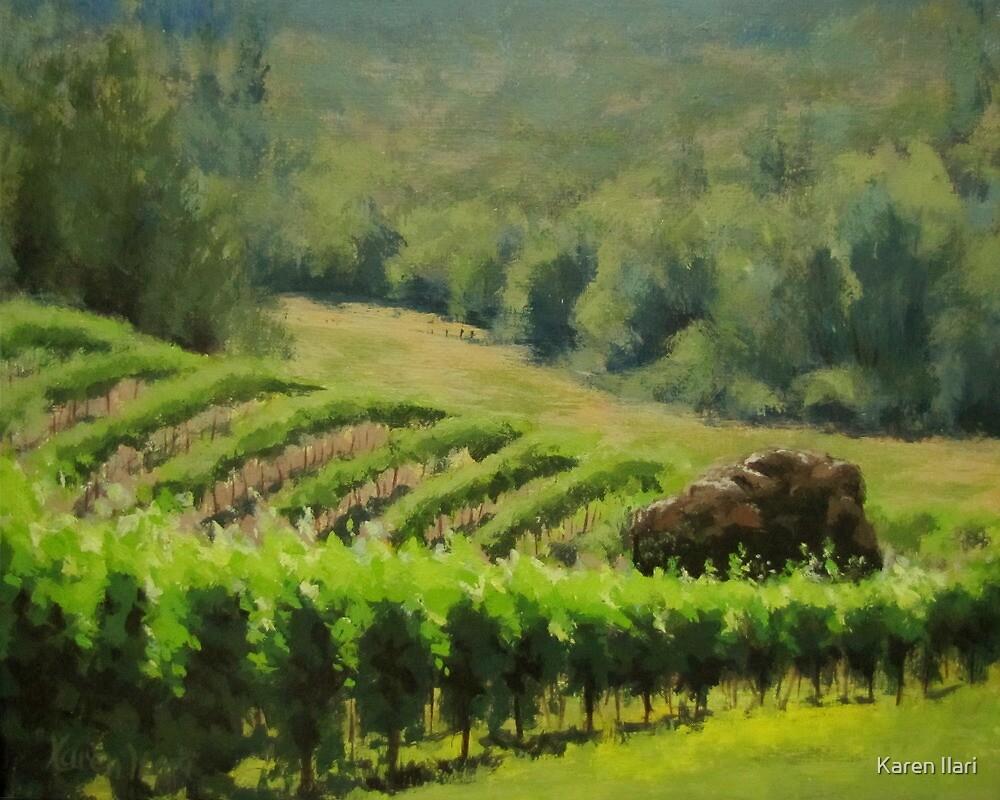 Abacela Vineyard by Karen Ilari