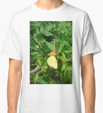 Cloudless Sulphur butterfly in Mahogany Vine Classic T-Shirt