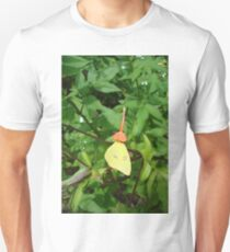 Cloudless Sulphur butterfly in Mahogany Vine Unisex T-Shirt